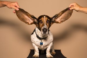 use your ears in the recording studio