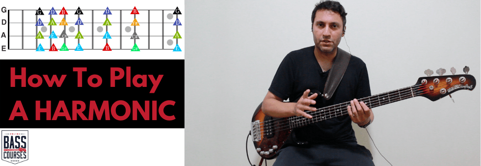 Beginner Bass Lesson How To Play A Natural Harmonic