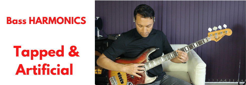 Tapped & Artificial HARMONICS On Bass Guitar (With Chord Progression)