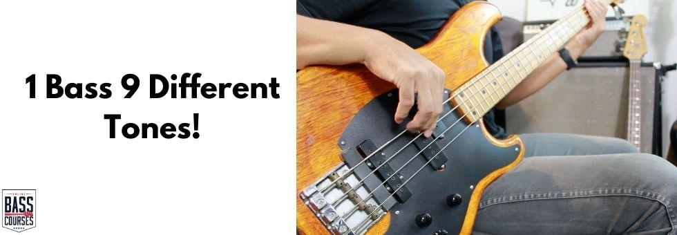 1 Bass 9 Different Tones!